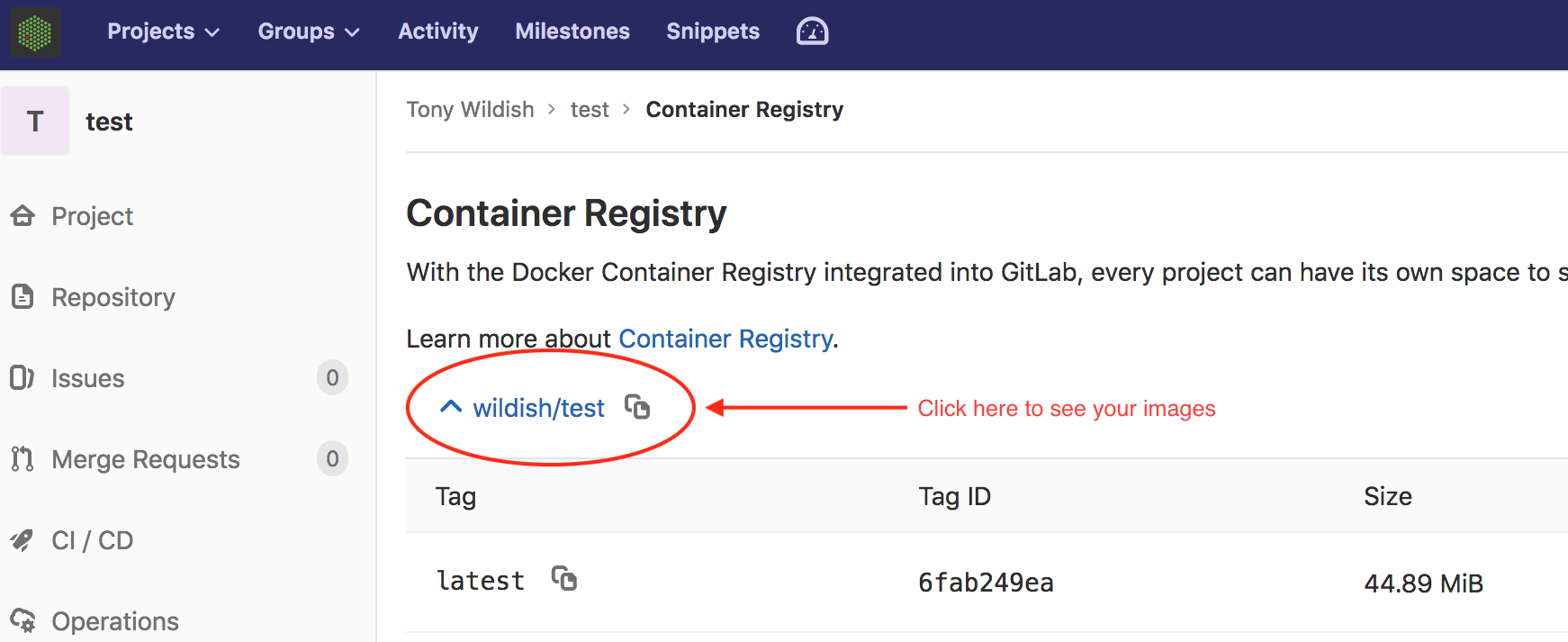 Exercise 20 Download and run the docker image from your gitlab ...